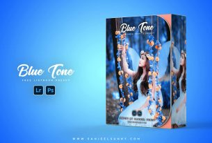 blue-tone-free-lightroom-preset-for-mobile-and-photosop-free-download-2021-zip-file (2)